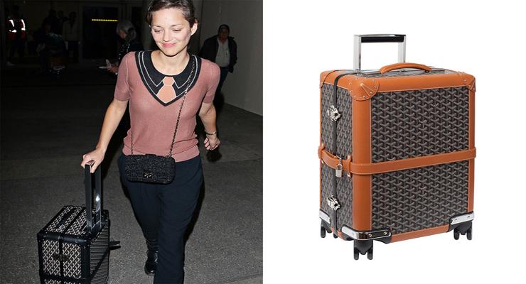 Celebrity carryon luggage travel