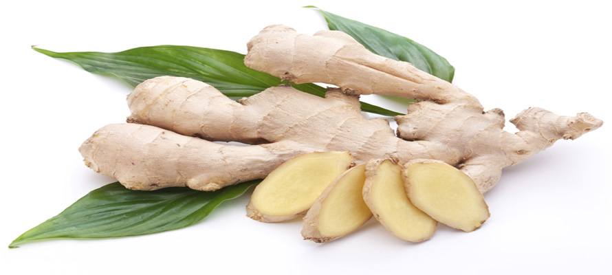 medicinal plant against diabetes – chopped ginger