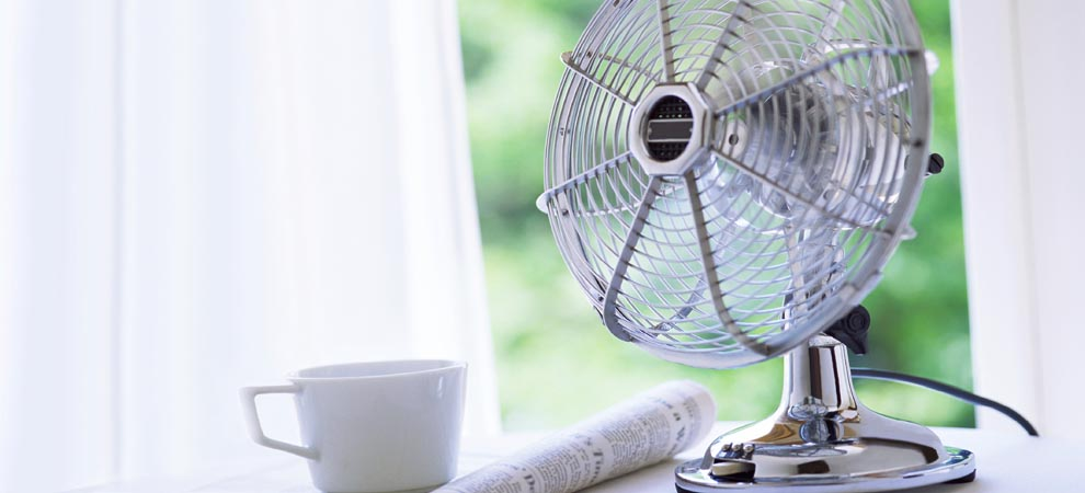 Table Fan with a cup in front
