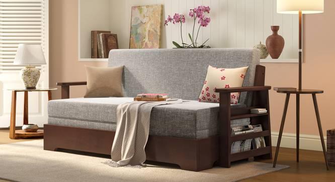 Oshiwara Sofa Cum Bed
